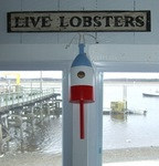 Lobster Buoy Birdhouses